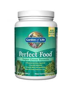Garden of Life Perfect Food 600g Powder