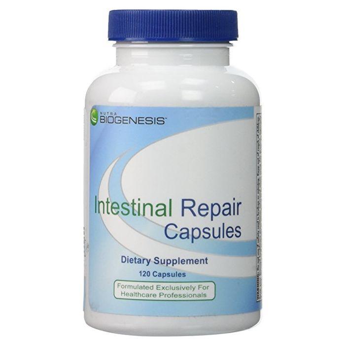 intestinal repair