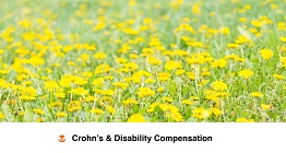 Crohn's Disability Benefits Guide