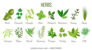 Herbs For Healthy Living!