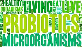 Are refrigerated Probiotic Supplements better? Do Specific Strains Matter?