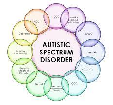Probiotics for Quality of Life in Autism Spectrum Disorder