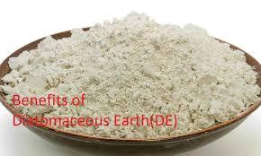 Diatomaceous Earth & Its Benefits!!