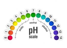 Heal Your Body With The Proper Ph Balance
