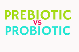 Should you take Prebiotics Or Probiotics?