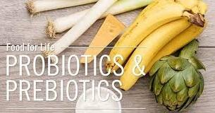 It's Important to Take Both Prebiotics and Probiotics for Gut Health!